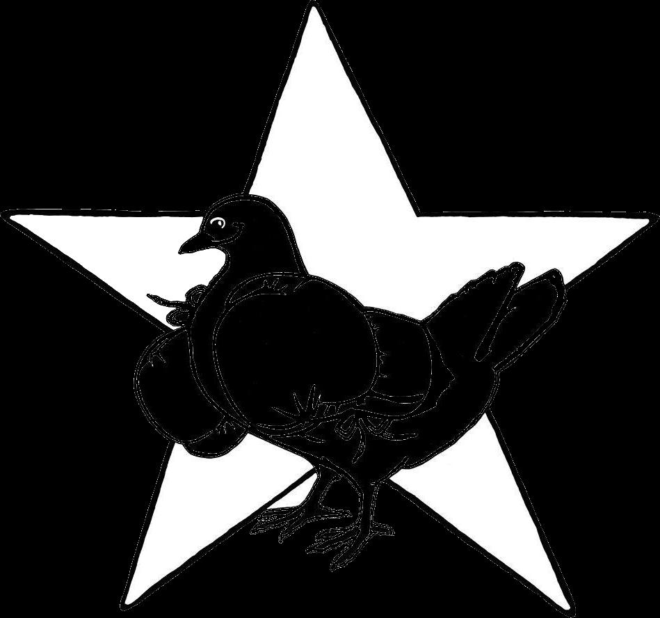 Logo Friedensplenum